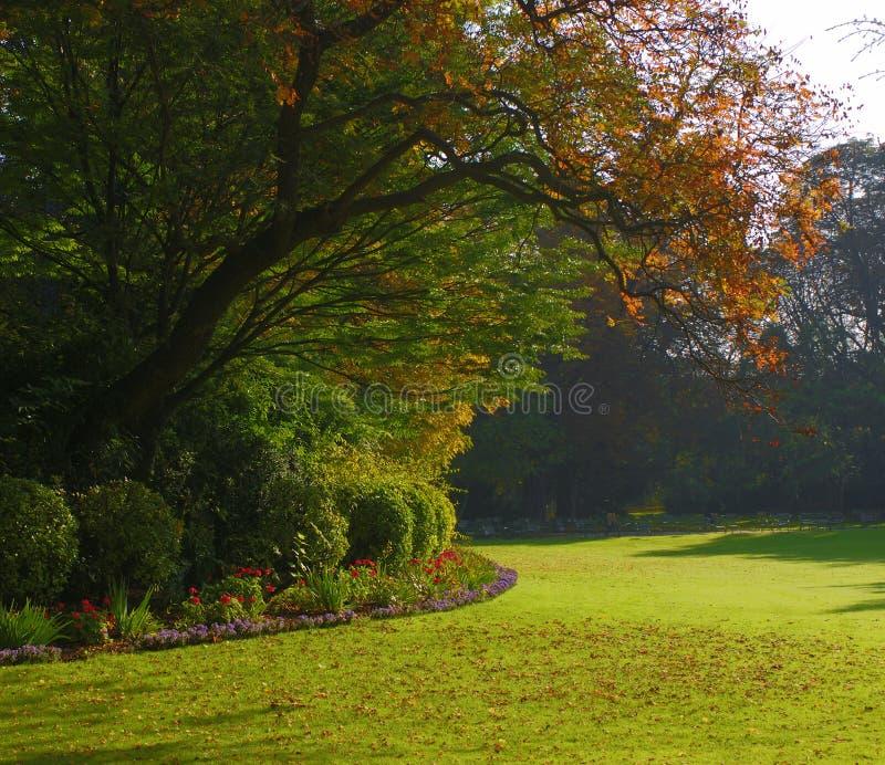 Ruhiger Garten im Herbst lizenzfreie stockfotografie