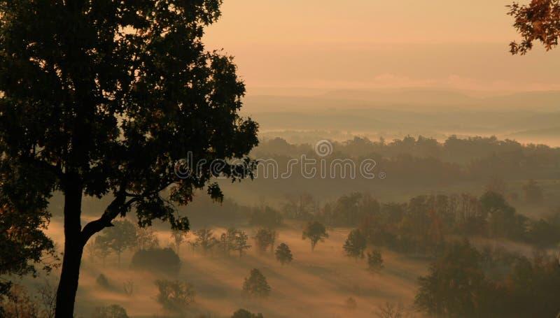 Ruhiger goldener Sonnenaufgang über einem Tal des Nebels stockfotografie