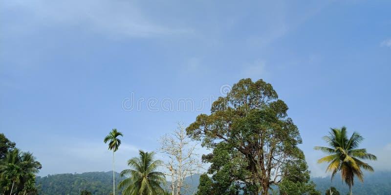 Ruhiger Himmel lizenzfreies stockfoto