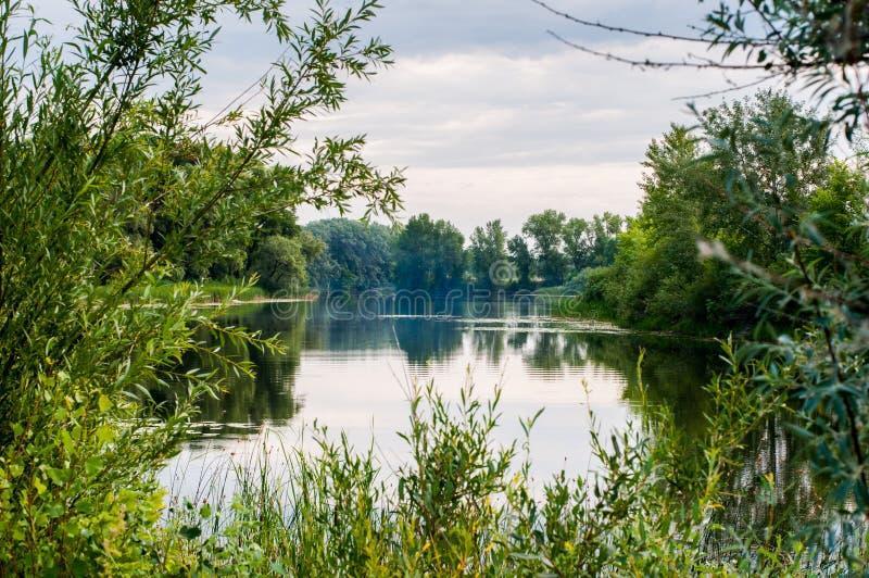 ruhiger Morgen auf dem ruhigen und schönsten See stockfoto