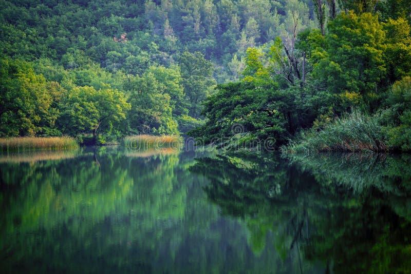 Ruhiger Morgen-Fluss lizenzfreie stockbilder