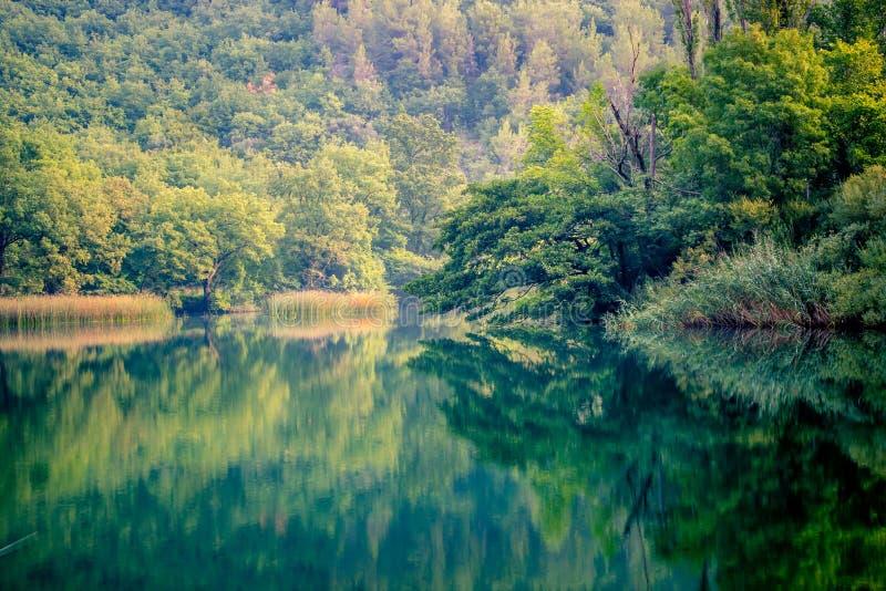 Ruhiger Morgen-Fluss stockbilder