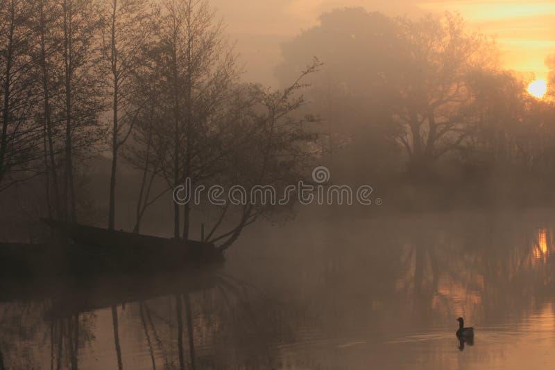 Ruhiger nebelhafter See am Sonnenaufgang stockfotografie