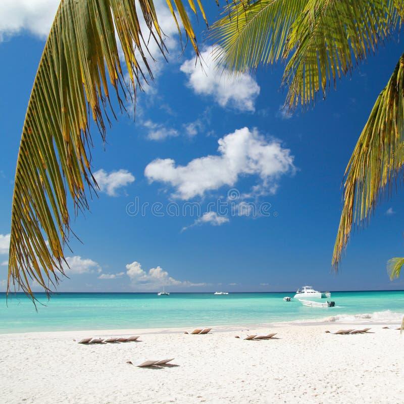 Ruhiger Strand auf karibischem Meer lizenzfreies stockfoto