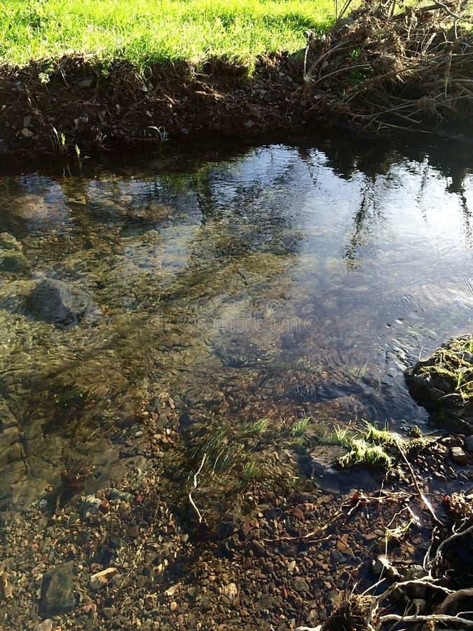 Ruhiges Wasser lizenzfreies stockbild