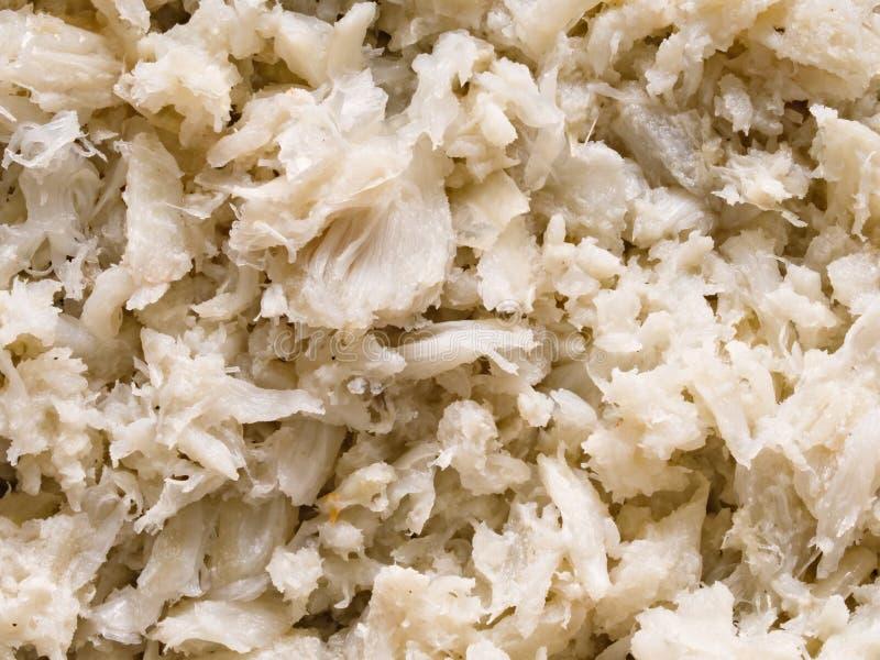 Ruige gekookte het voedselachtergrond van het krabvlees stock afbeeldingen