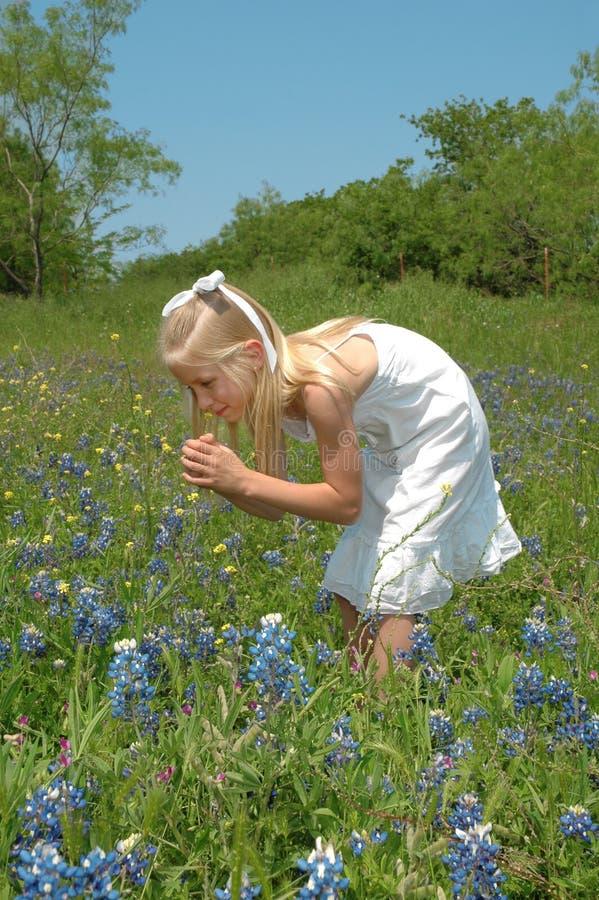 Ruik de Bloemen stock foto