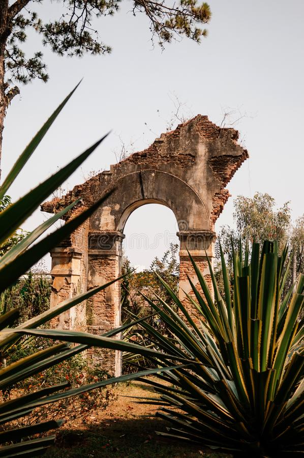 Ruin abandoned old building gate with Sisal agave plant royalty free stock image