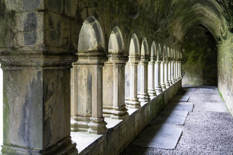Ruin Old Cloister walk irlanda imagem de stock royalty free