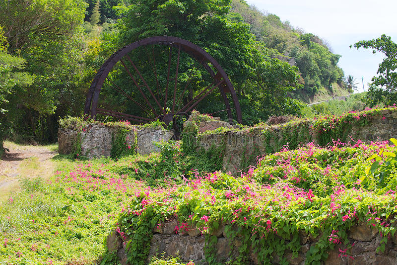 Old sugar mill with wild flowers royalty free stock photography