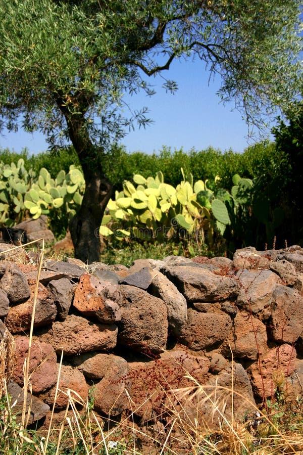Ruin Sardinia Stock Photography