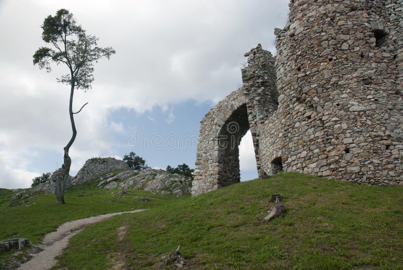 Ruina del castillo Hrusov y del árbol solitario imagen de archivo libre de regalías