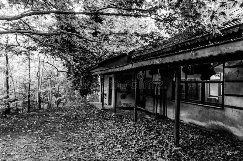 Ruina Desolated del edificio en arbolado del campo turco fotos de archivo libres de regalías