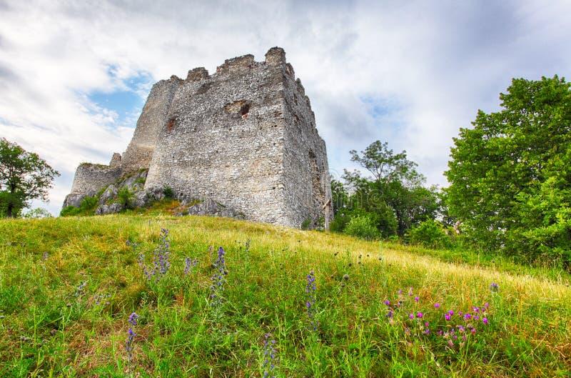 Ruina grodowy Tematis, Sistani natury krajobraz fotografia royalty free