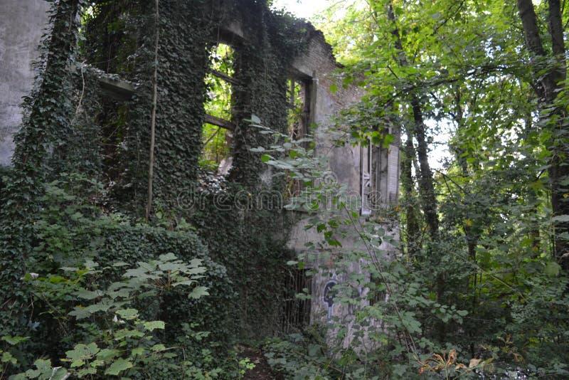 Ruina przód obraz royalty free