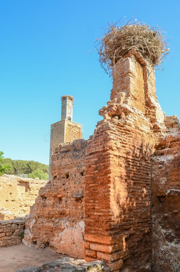 Ruinas antiguas de la necrópolis de Chellah con la mezquita y el mausoleo en la capital Rabat, Marruecos, África del Norte del `  imagenes de archivo