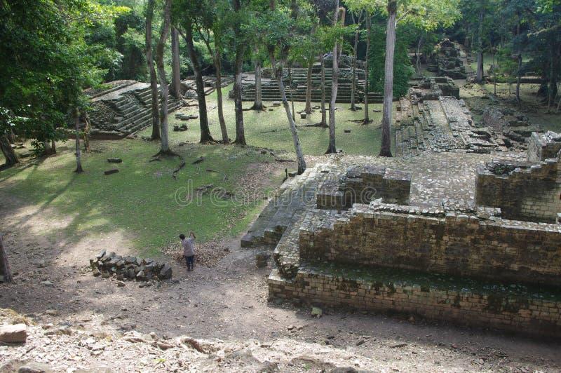 Ruinas de Copan foto de archivo libre de regalías