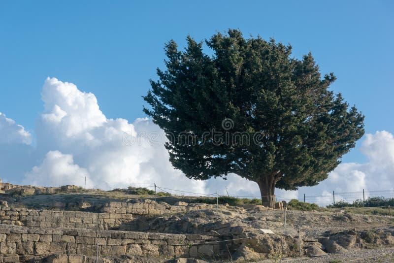Ruinas de la acrópolis antigua de Kamiros en Rodas fotos de archivo libres de regalías