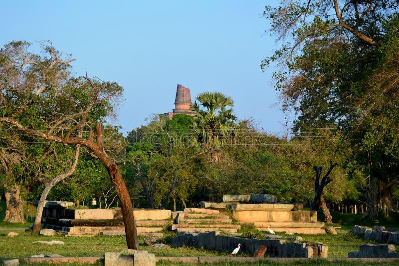 Ruinas de la ciudad antigua Anuradhapura con el stupa o de Jetavaranama imagen de archivo