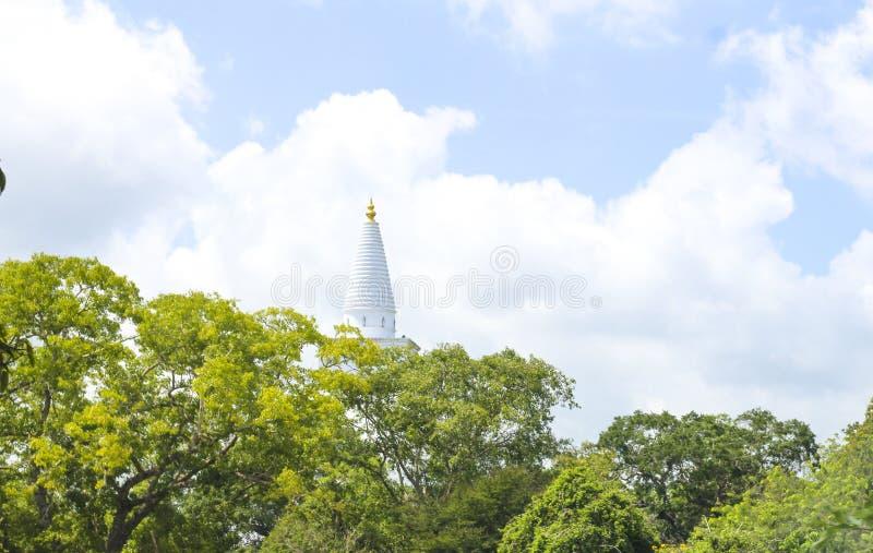 Ruinas de la ciudad sagrada en Anuradhapura, Sri Lanka imagenes de archivo