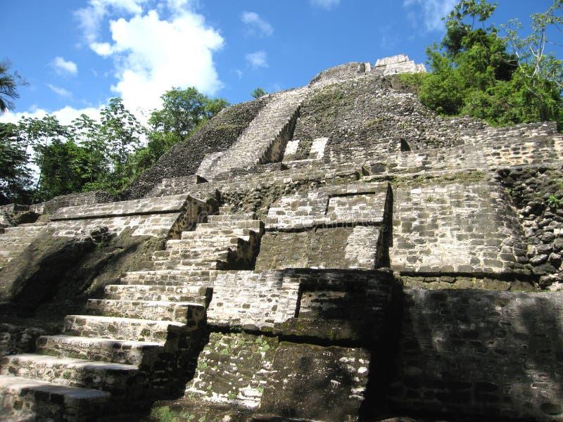Ruinas de Lamanai foto de archivo