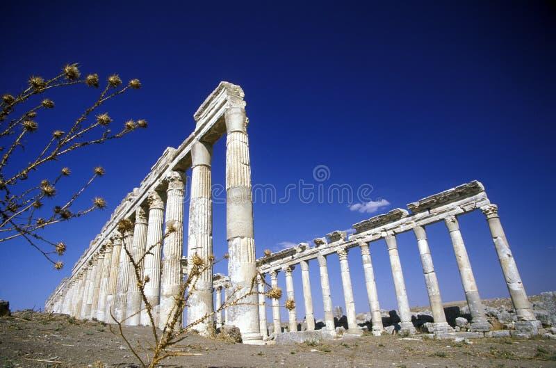 Download RUINAS DE ORIENTE MEDIO SIRIA HAMA APAMEA Imagen editorial - Imagen de siria, historia: 64208840