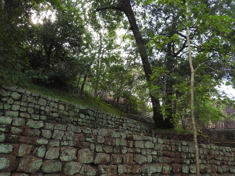 Ruinas de Royal Palace encima de la roca del le?n, Sigiriya, Sri Lanka, sitio del patrimonio mundial de la UNESCO fotografía de archivo