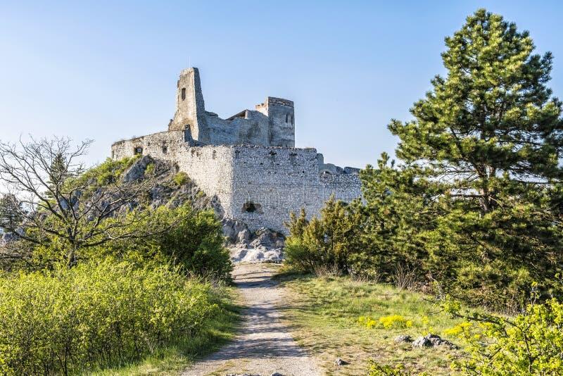 Ruinas del castillo de Cachtice, Eslovaquia fotografía de archivo