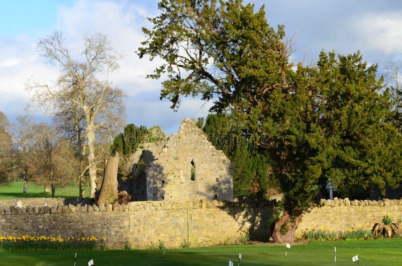 Ruinas del monasterio de Adare en Irlanda imagen de archivo