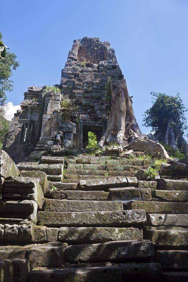 Ruinas del templo antiguo de Angkor fotos de archivo libres de regalías
