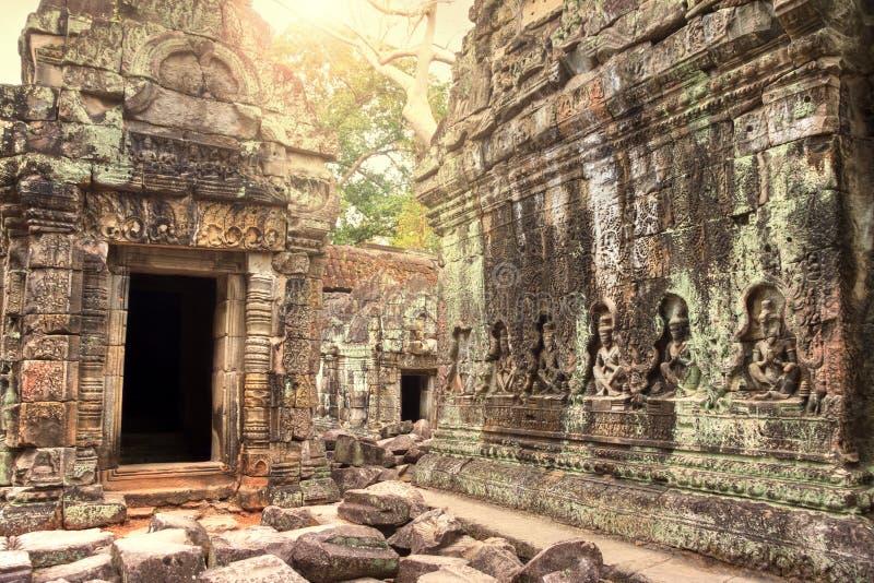 Ruinas del templo antiguo perdidas en selva fotografía de archivo