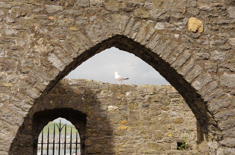 Ruinas en Howth imagen de archivo