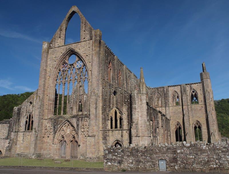 Ruinas históricas de la abadía de Tintern, País de Gales fotografía de archivo libre de regalías
