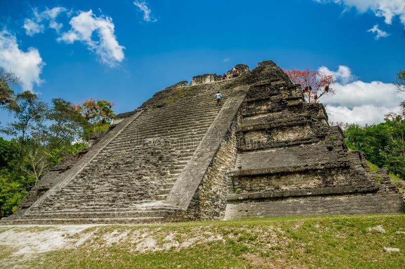Ruinas mayas de Tikal en Guatemala fotografía de archivo libre de regalías