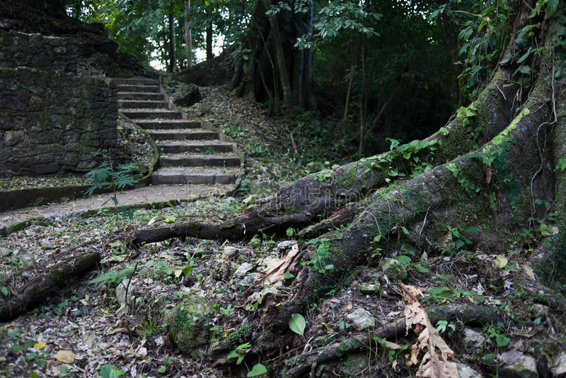 Ruinas mayas en Palenque imagenes de archivo