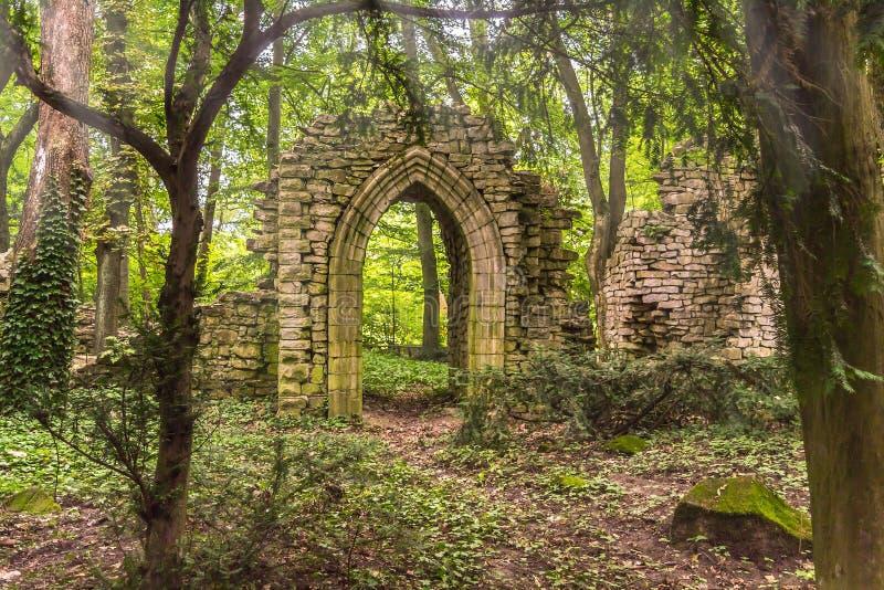 Ruinas profundamente en el bosque con luz del sol fotografía de archivo
