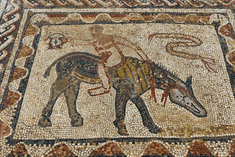 Ruinas romanas antiguas y mosaicos de Volubils fotos de archivo