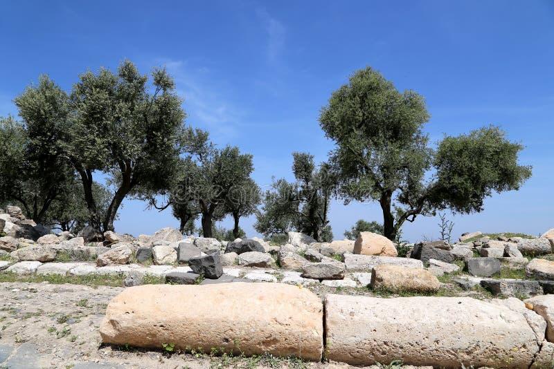 Ruinas romanas en Umm Qais (Umm Qays), Jordania imagen de archivo libre de regalías