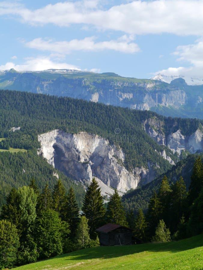 Ruinaulta or Rhine canyonin Switzerland royalty free stock image