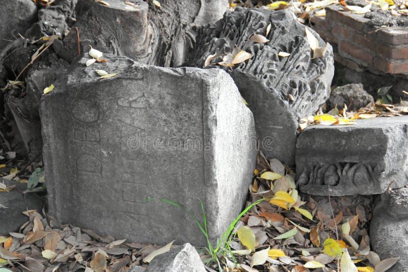 Ruine antique, colonne corinthienne image stock