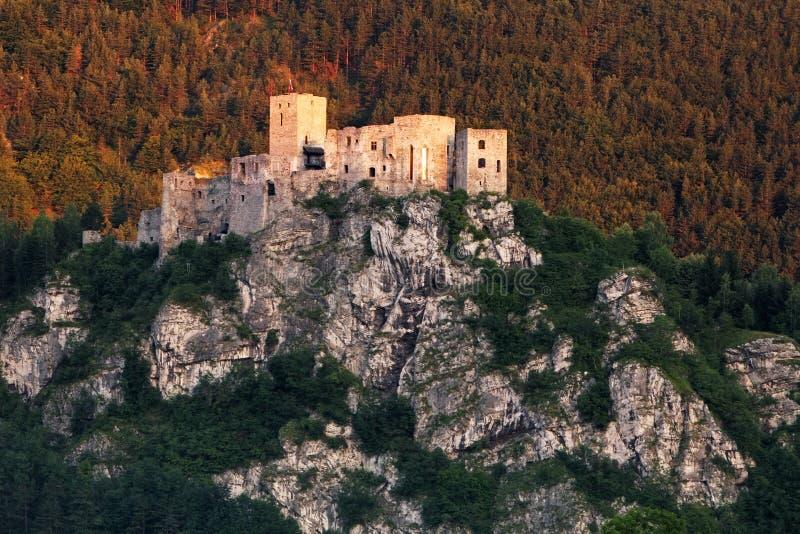 Ruine de château Strecno - Slovaquie photo libre de droits