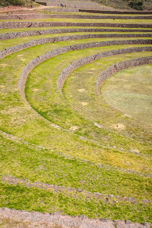 Ruine de Moray Inca au Pérou photos libres de droits