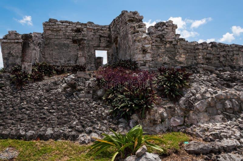 Ruine maya dans Tulum, Yucatan, Mexique. image stock
