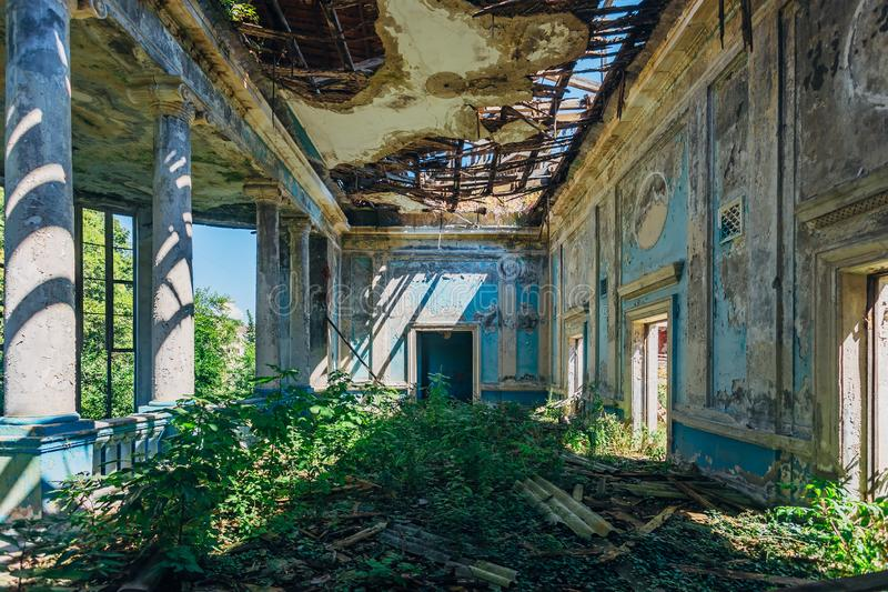 Ruined mansion hall interior overgrown by plants. Nature and abandoned architecture, green post-apocalyptic concept royalty free stock images
