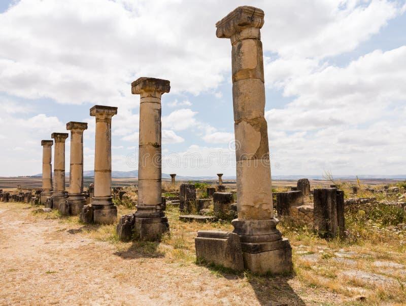 Ruinen bei Volubilis Marokko lizenzfreies stockbild