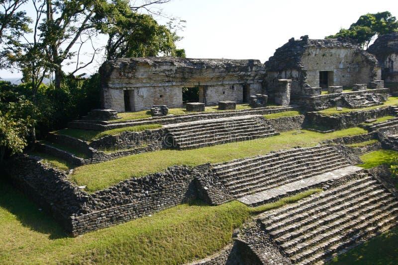 Ruinen der alten Mayastadt Palenque, Mexiko lizenzfreie stockfotos