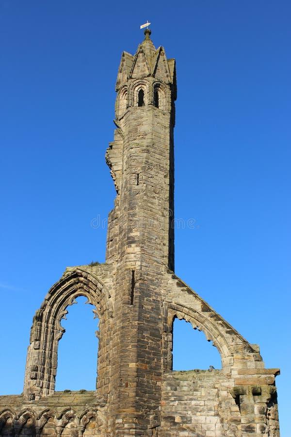 Ruinen der Kathedrale von St Andrew, St Andrews, Pfeife lizenzfreies stockfoto