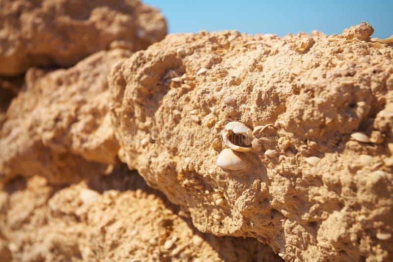 Ruinen in der Wüste stockfotografie