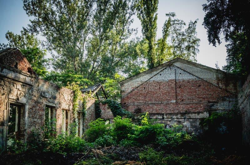 Ruinen des alten Sommerkinos Seine ehemalige Pracht lizenzfreies stockfoto