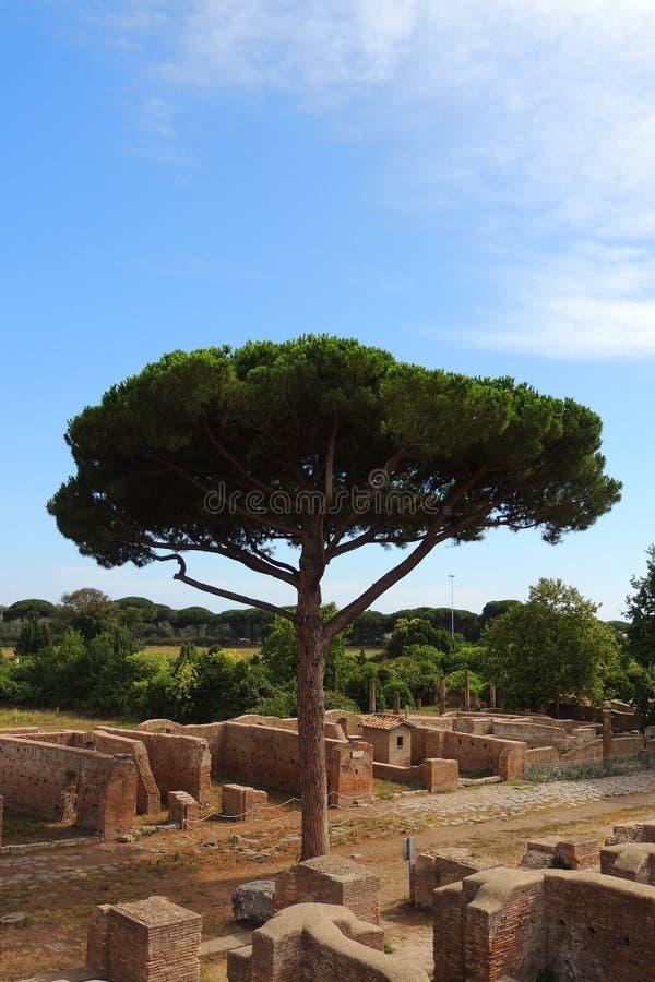 Ruinen Ostia Antica stockfotografie
